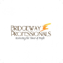 Bridgeway Professionals Inc