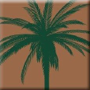 Palm Garden Of Gainesville