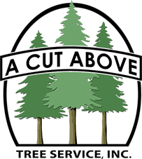 A Cut Above Tree Svc
